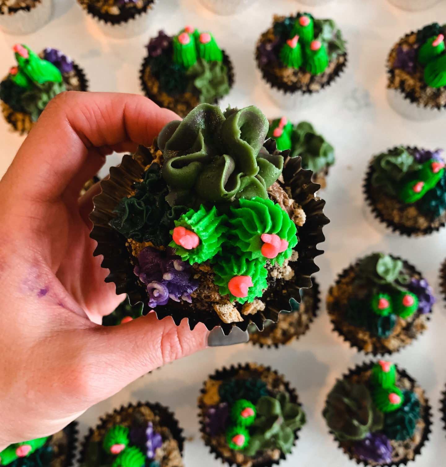 Create Your Own Diy Succulent Cupcake Garden Sara Off Duty